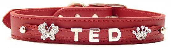 Collar Fashion Cuero Mate Rojo - personalizados con nombre.