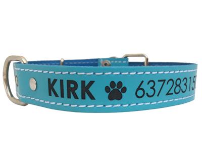 Collar para perro de Piel Azul Turquesa - personalizados con nombre y teléfono. (XS-L)